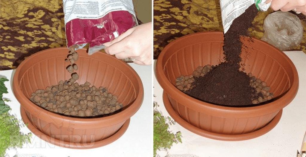 Pogledajte slike glinenih kuglica
